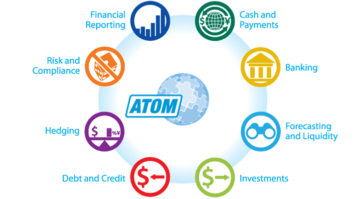 ATOM Treasury and Risk System | Overview